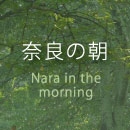 奈良の朝 Nara in the morning